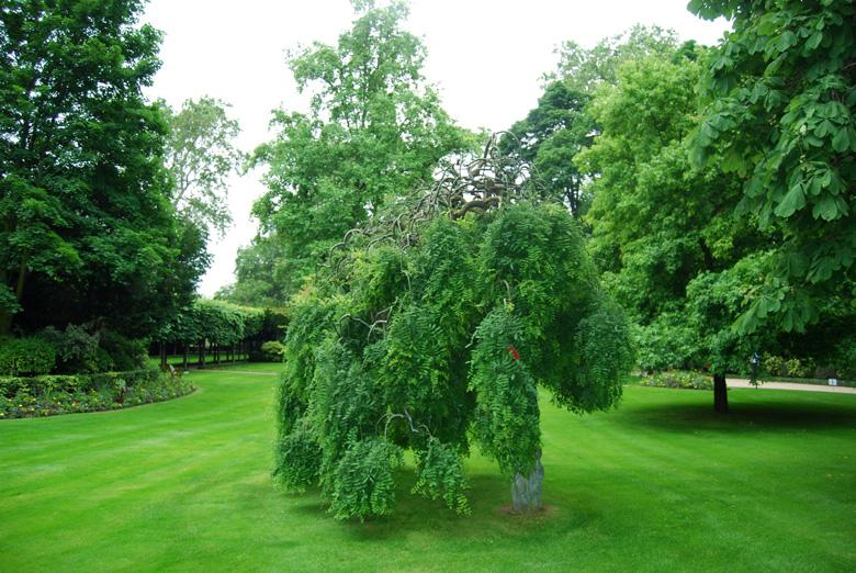Rendez vous au jardin de l h tel matignon a l 39 encre violette - Les jardins d hestia grezieu la varenne ...