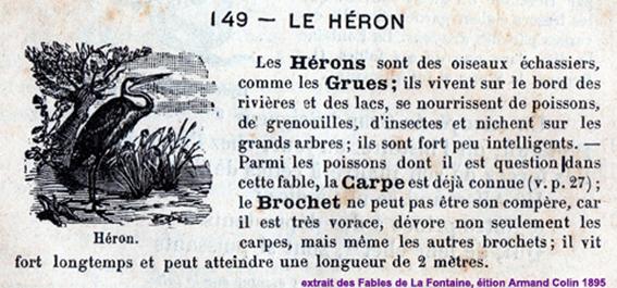 Le Heron A L Encre Violette