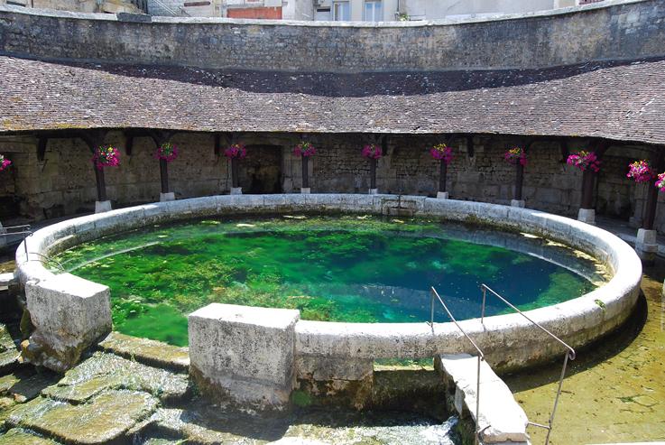 La fosse dionne une source du et de tonnerre a l 39 encre violette - Bassin canard d ornement pau ...