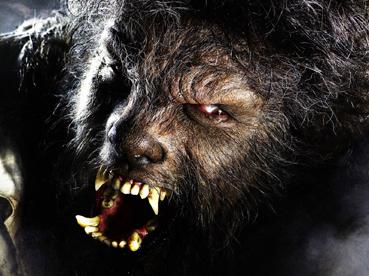 thewolfmanblog.jpg