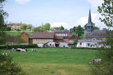 villagecamembert2.jpg