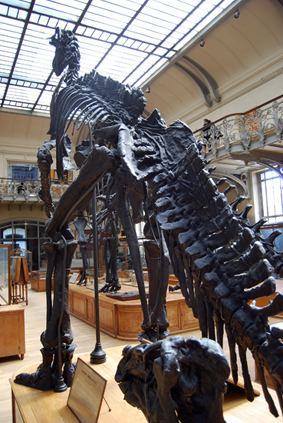 iguanodonblog.jpg