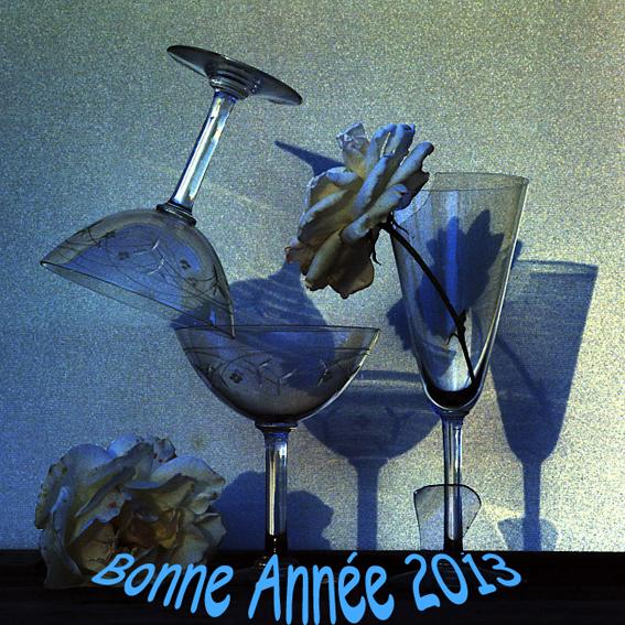 Bonne Année 2013 dans Almanach bonne-anneeblog-2013