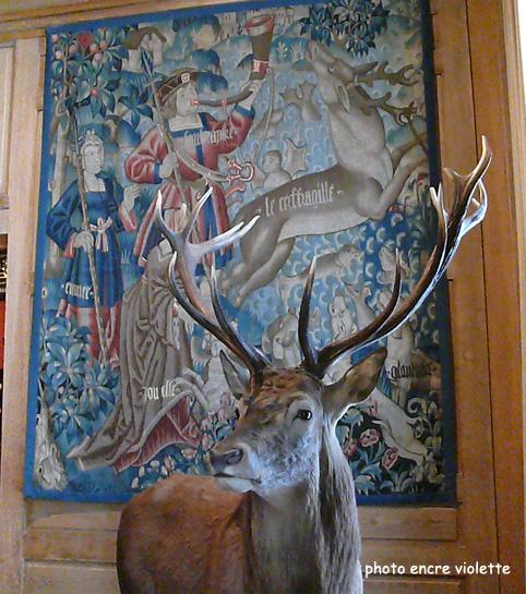 cerf-musee-de-lachasseblog