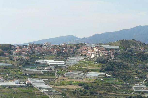 Poggio_(Sanremo)-P1010130