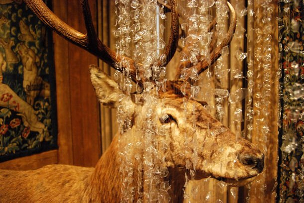 Musée Chasse blog4