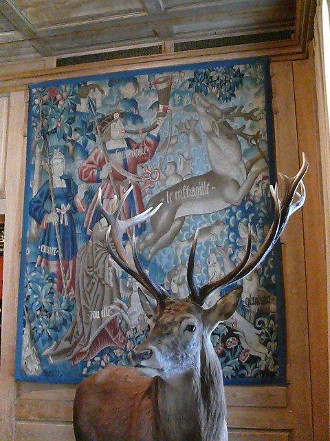Musée Chasse et Nature13