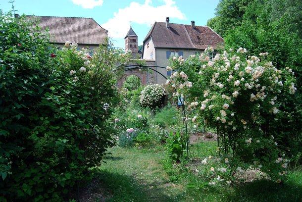 Murbach jardin blog1