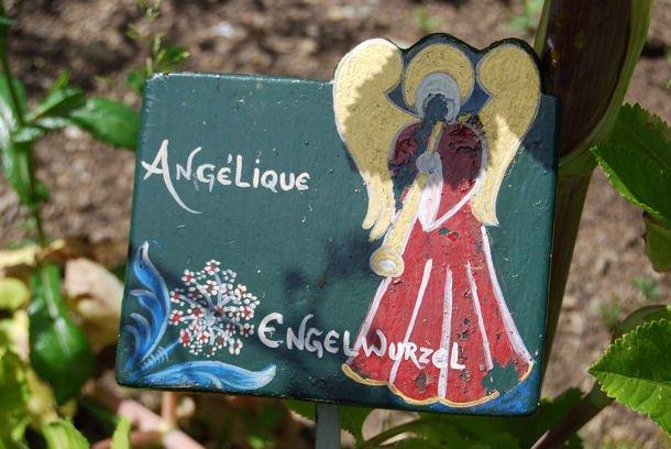 Murbach jardin blog4