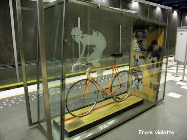 merckx Vélo Mexico 3