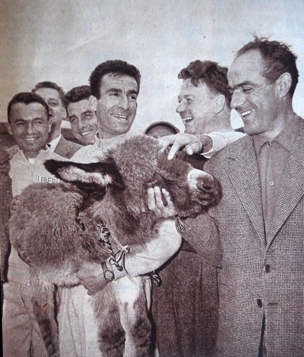 Blog Geminiani et âne