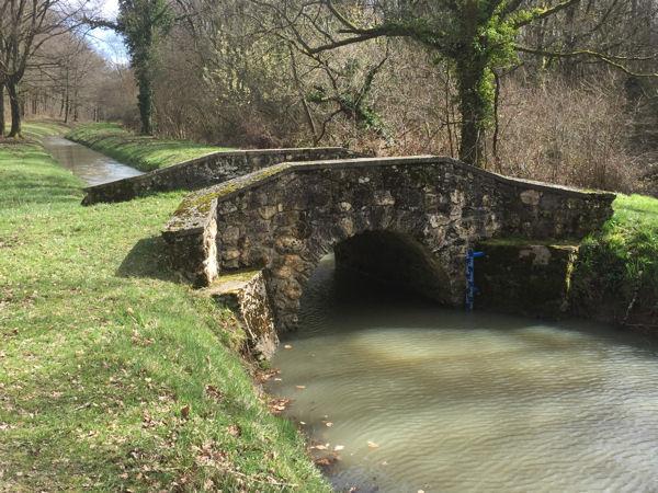 blog étang de Saint-Hubert 3