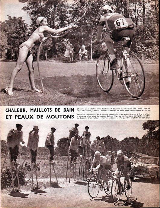 Blog Tour 1959 canicule échasses