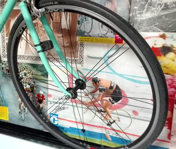 Blog atelier roue Merckx