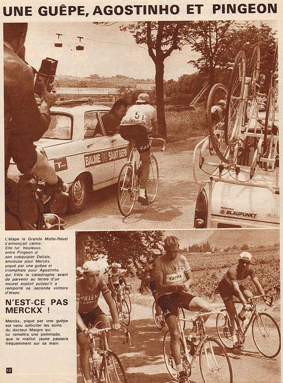 Blog Gde Motte-Revel guepe Merckx