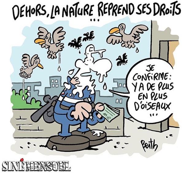 Siné mensuel berth-naturedroitsoiseaux_fb