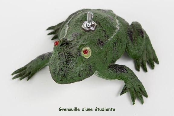 grenouille électrique 2